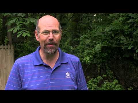 dismissal vs discharge maryland bankruptcy